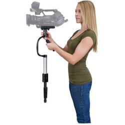 Professional Video Stabilizer Systems market