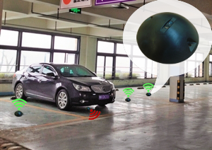 Vehicle Occupant Detection Sensor
