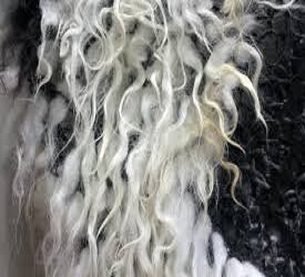 Cellulose Acetate Fiber Market