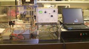 Electrophoresis Systems Market