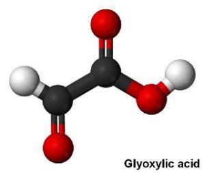 Glyoxylic Acid Market