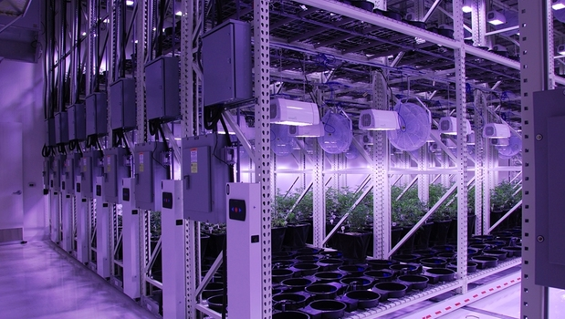 Mobile Vertical Growing Systems