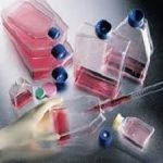 Monoclonal Antibody Custom Service Market
