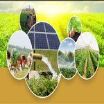 Smart Agriculture Solution Market