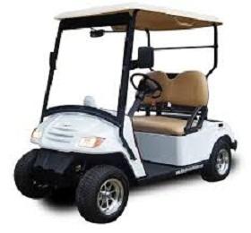 Golf Cart and Neighborhood Electric Vehicle