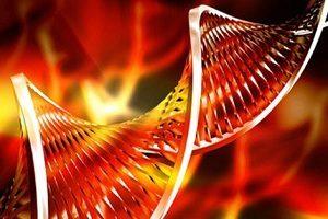 Single Molecule Real Time SMRT DNA Sequencing Market