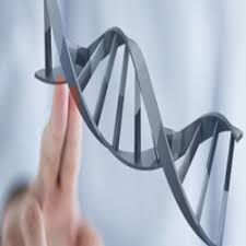 Targeted DNA/RNA Sequencing Market