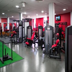 Gym Equipment Market