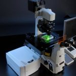 Laser Scanning Microscopes Market