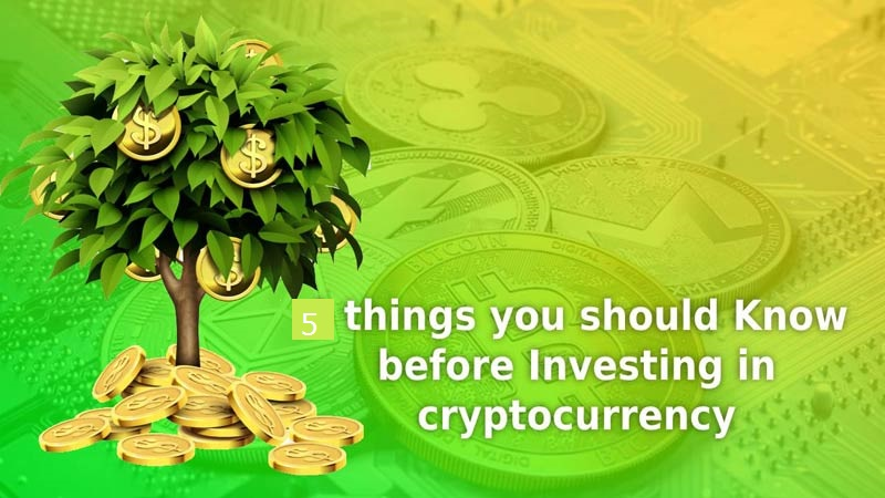 Things You Should Know Before Investing in Cryptocurrency ...